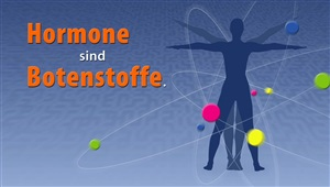 Hormontherapie