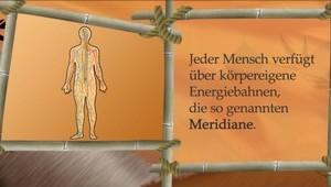 PROGNOS-Meridiandiagnostik